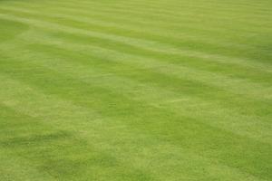 veilig grasmaaien